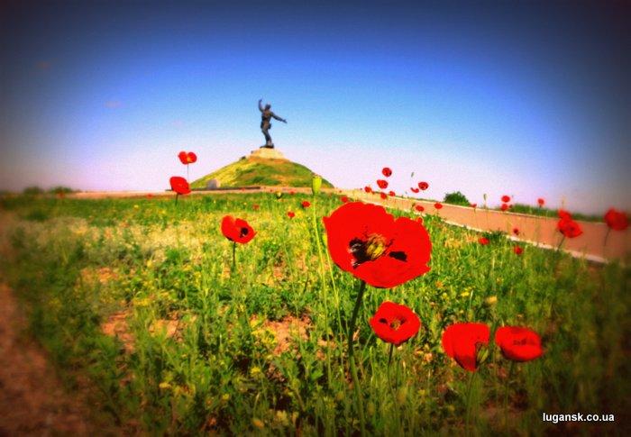 Памятник Комбат в маках, Луганская область, Украина.