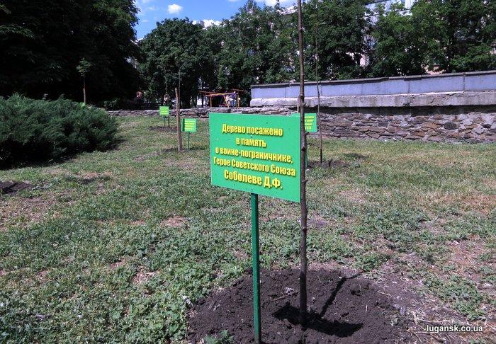 Таблички у деревьев, посаженных в честь герое воинов-пограничников. Алея Славы пограничников в сквере пограничников, Луганск.