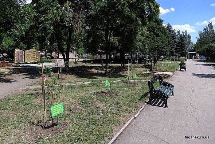 Аллея Славы пограничников в сквере пограничников, Луганск.