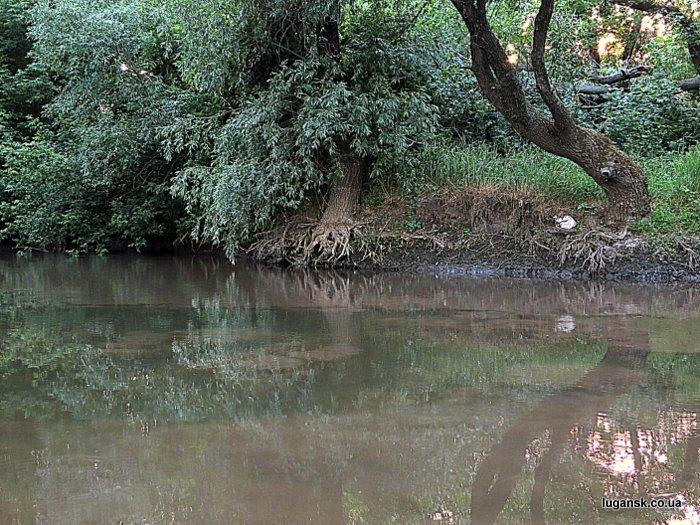 Устье реки Белая.