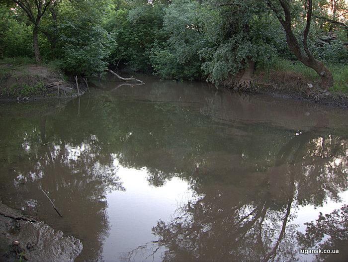 Устье реки Белая. Белая -слева, Лугань - справа.