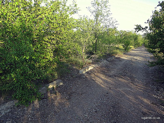 Останки дороги, на пути в Желтое.