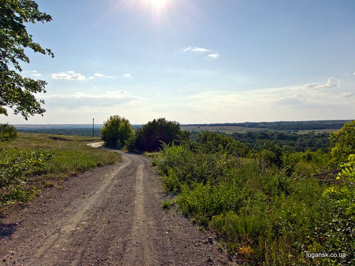 Дорога в Крутой Горе.