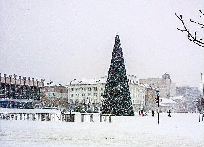 йолка, ялинки, елка луганск