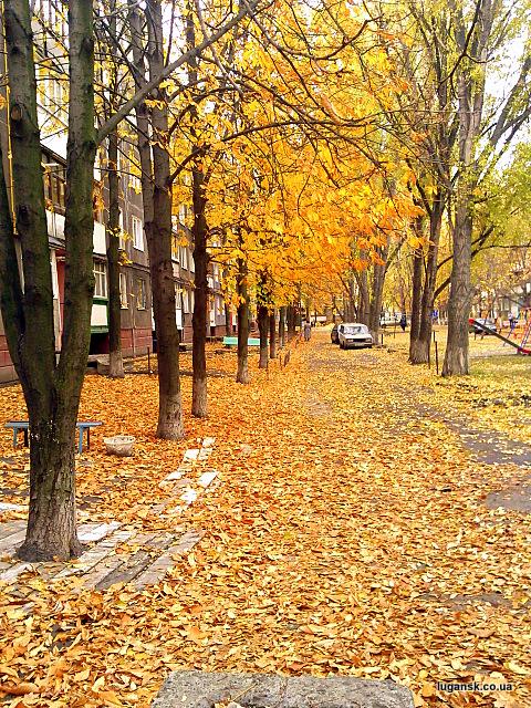 Ах какая осень в Луганске!