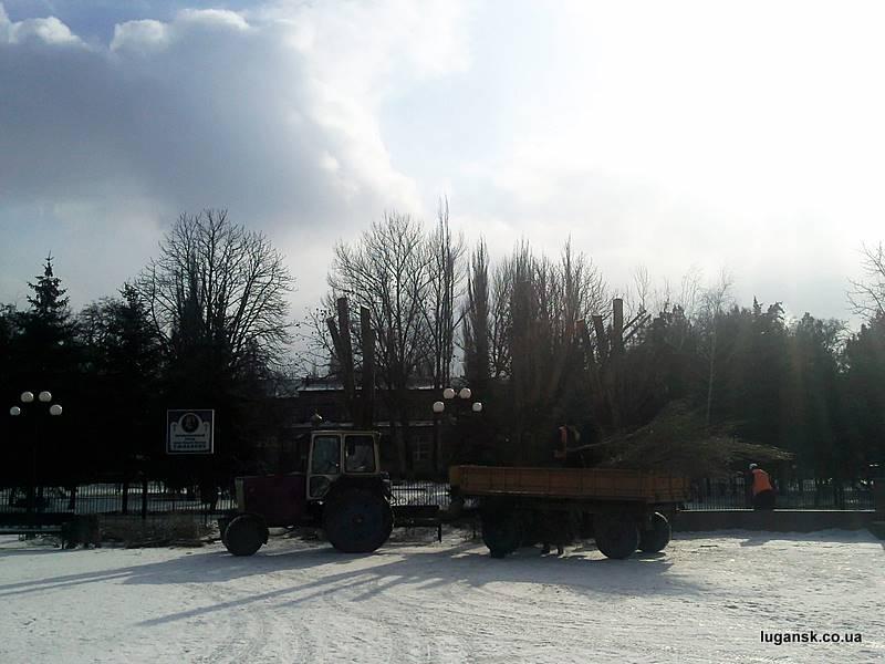 Обрезка деревьев в Луганске.
